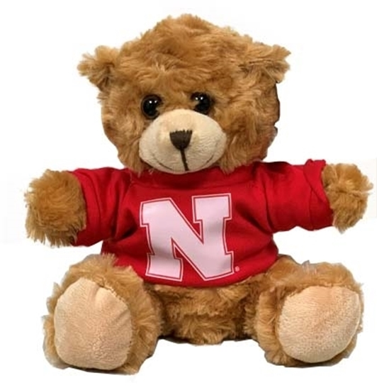 """Picture of NU Bear 9"""""""